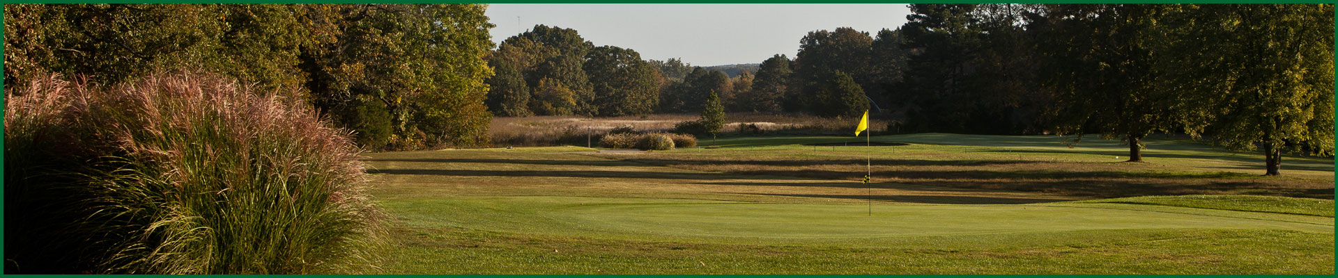 Photo of number 5 green