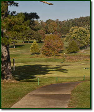 Photo of hole #3 at Spring Creek Golf Club
